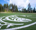 Sports Field - Logo